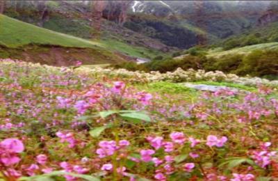 Explorers valley-of-flowers-hemkund