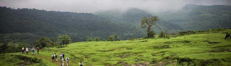 Bhorgiri to Bhimashankar