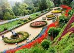 RoseGarden-Chandigarh