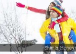 shimla honeymoon package 1