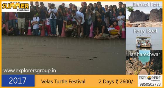 Explorers Velas Turtle Festival