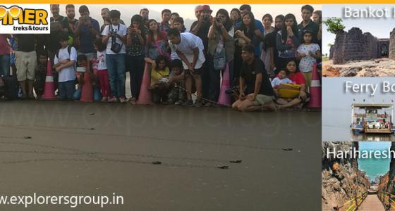 Velas Turtle Festival by Explorers Pune Mumbai