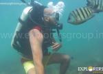 Explorers Tarkarli Beach Camping Water Soprts