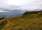 Bhrigu Lake Trek Explorers BHETHAR DHAR